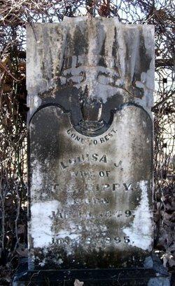 Louisa Jane <i>Cranshaw</i> Rippy