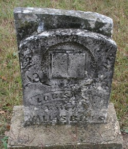Louisa Jane <i>Hardin</i> Bills