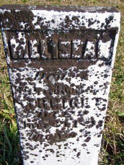 Melissa Ann Strait