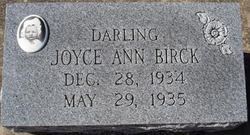 Joyce Ann Birck