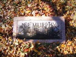 N. P. Murphy