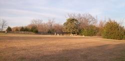 Swartz Cemetery
