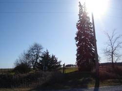 Owens Grove Cemetery