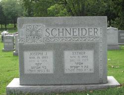 Joseph J Schneider