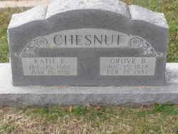 Katie <i>Barnett</i> Chesnut
