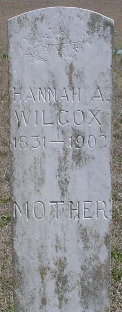 Hannah A Wilcox