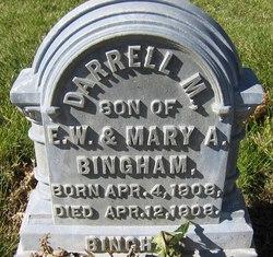 Darrell Bingham