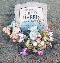 Shelby Harris