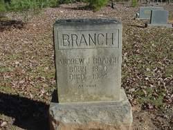 Andrew J Branch