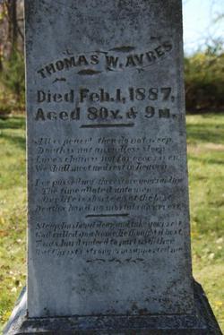 Thomas W Ayres