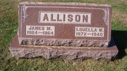James Madison Allison