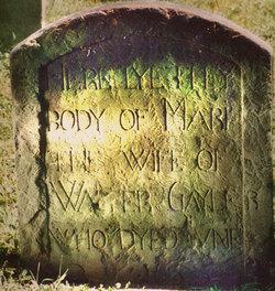 Mary <i>Stebbins</i> Gaylord