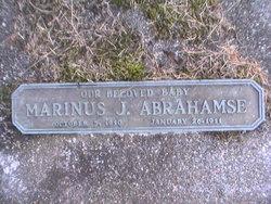 Marinus J Abrahamse