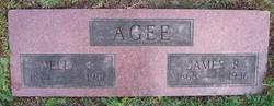 Deltasena Ethel Della <i>Leedy</i> Agee