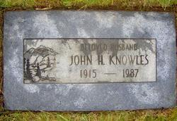 John Henry Knowles