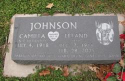 Leland Johnson