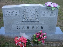 Amma Anna <i>Vineyard</i> Carper