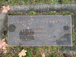 Anthon L. Burbidge
