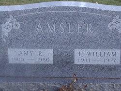 Amy R <i>Kinch</i> Amsler