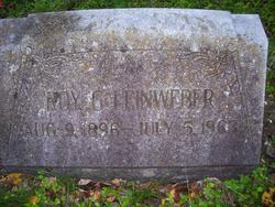 Roy G Leinweber