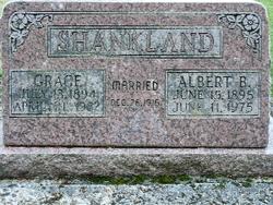 Albert B Shankland