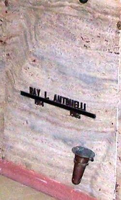 Ray L Antonelli