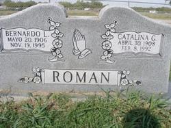 Bernardo L Roman