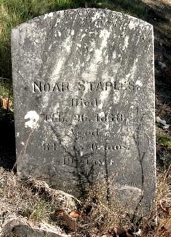 Noah Staples