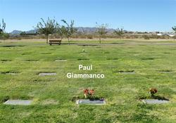 Paul J Giammanco