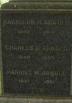 Harrison H Arnold