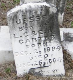 Jesse Carter