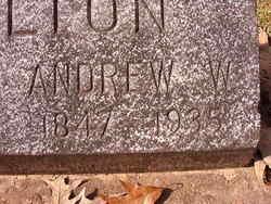 Andrew W Hamilton