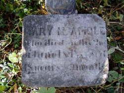 Mary M. Amole