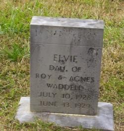 Elvie Waddell
