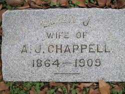 Eliza Jane <i>Passmore</i> Chappell