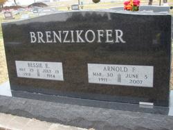 Arnold F. Brenzikofer