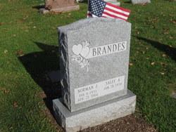 Norman J Brandes