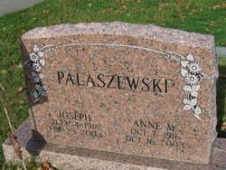 Anne M Palaszewski