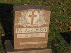 Richard J Palaszewski