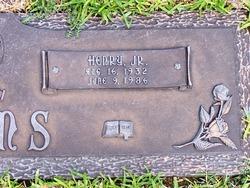 Henry Adams, Jr