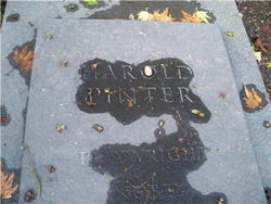 harold pinter photographs
