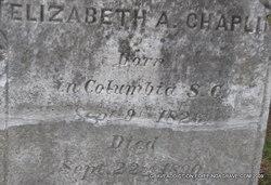 Elizabeth A Chaplin