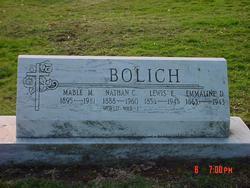 Lewis E Bolich