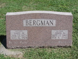 Mary M Bergman