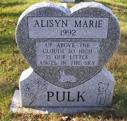 Alisyn Pulk