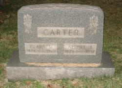 Albert J Carter