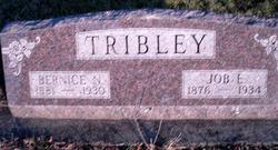 Bernice N. <i>Melvin</i> Tribley