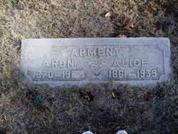 Aaron Alexander Arment