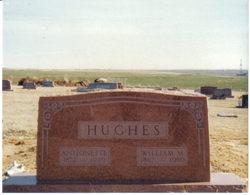 Antionette Nettie <i>Balfour</i> Hughes