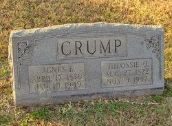 Agnes E. Crump